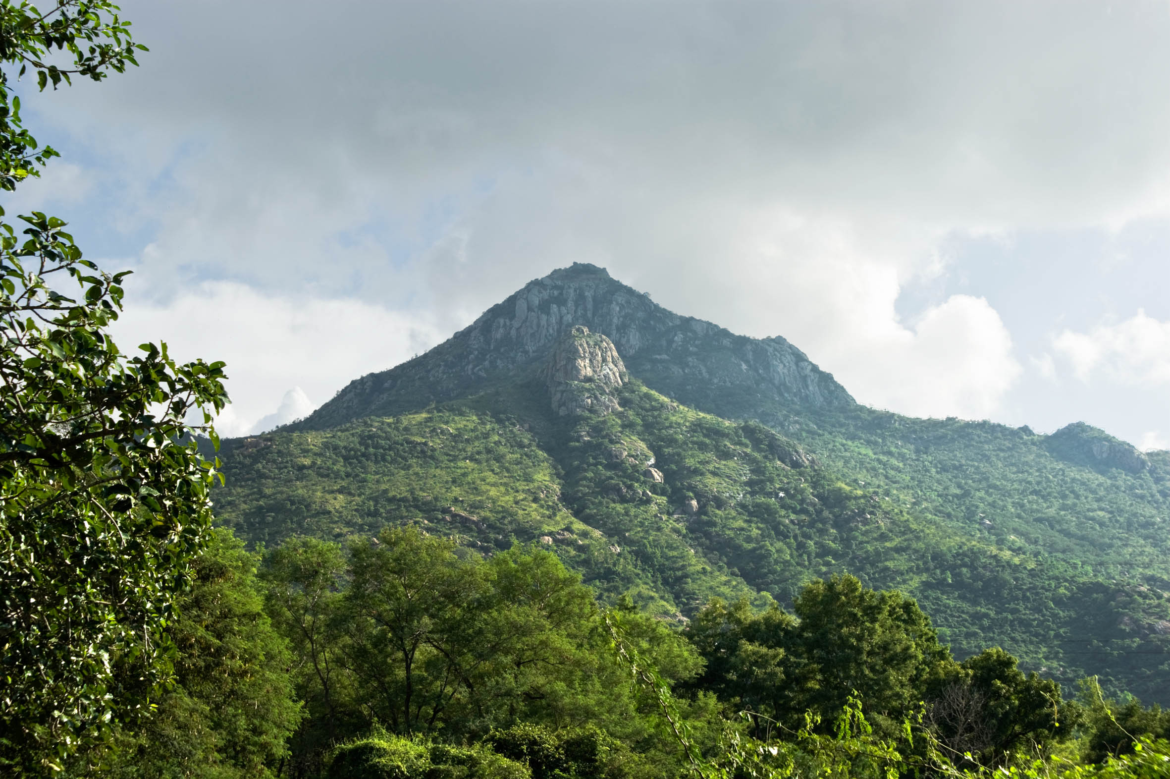 Arunachala hill, the place where Ramana would remain.