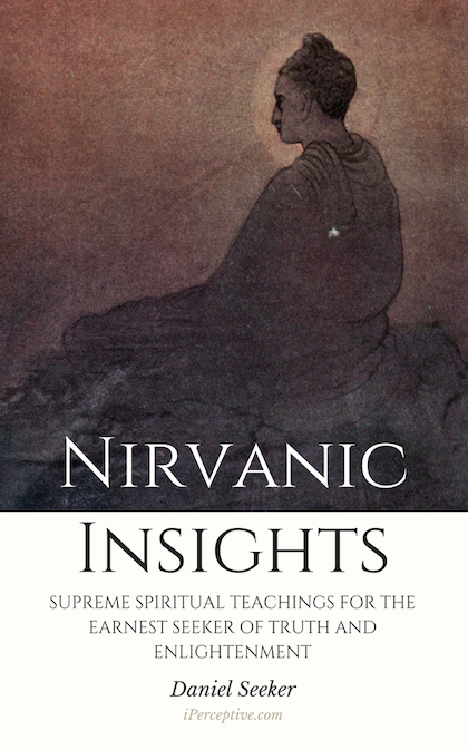 nirvanic insights by daniel seeker book cover image