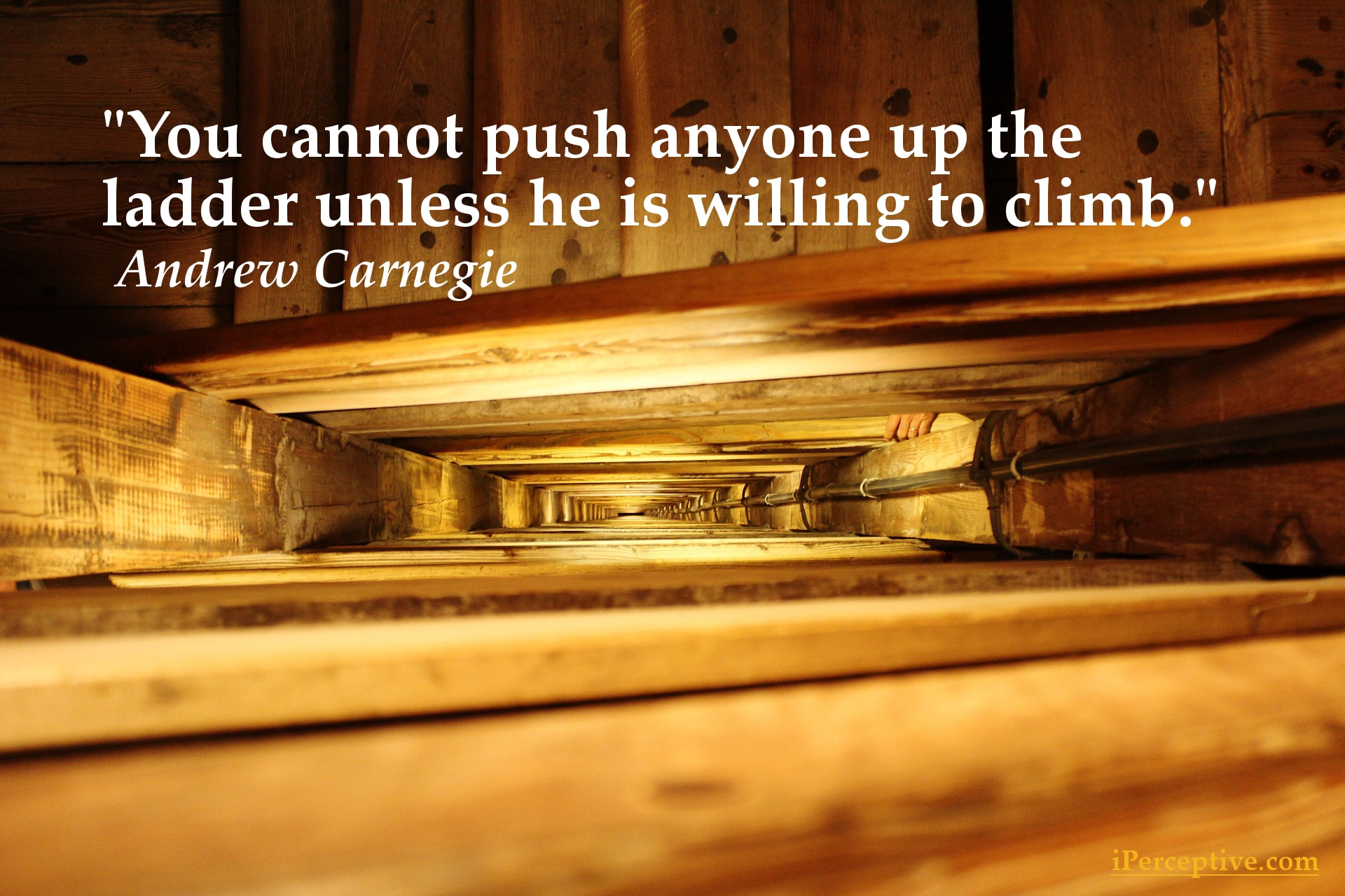 Andrew Carnegie Quote - You cannot push anyone up the ladder...