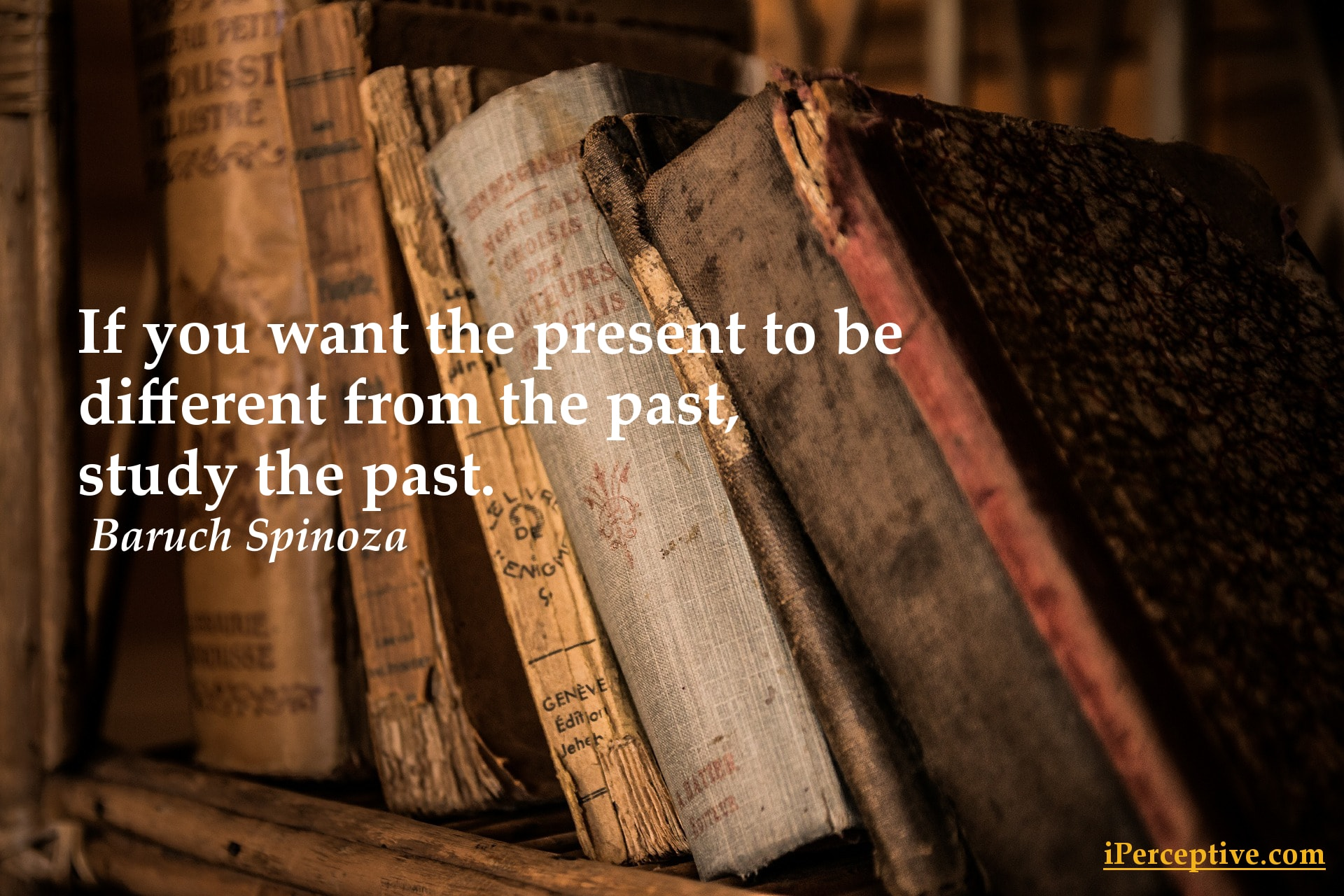 Baruch Spinoza Quote - If you want the present to be...