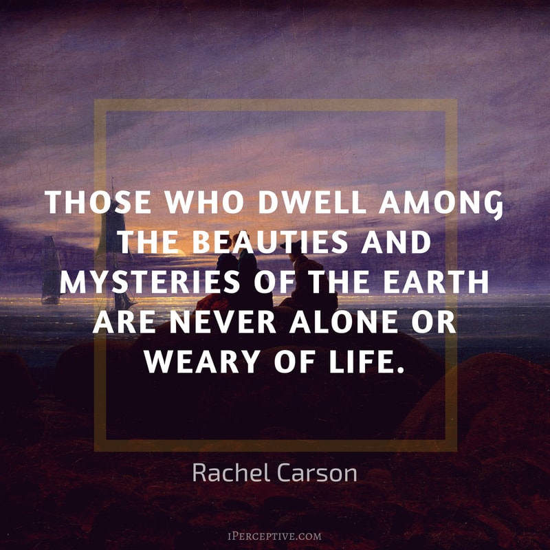 Rachel Carson Quote: Those who dwell among the beauties and mysteries of the earth are never alone or weary of life.