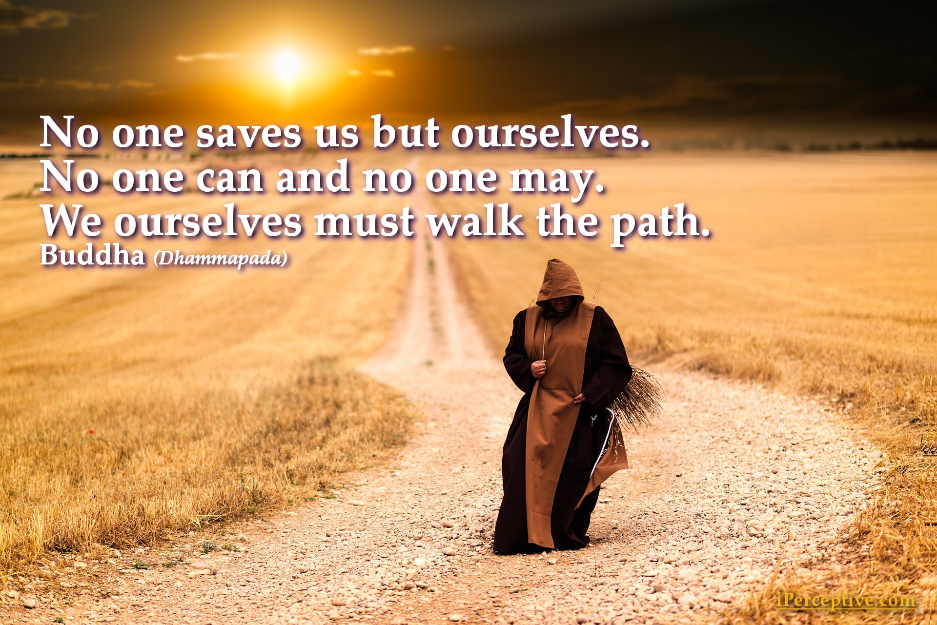 Buddha Quote: No one saves us but ourselves. No one can and no one may. We ourselves...