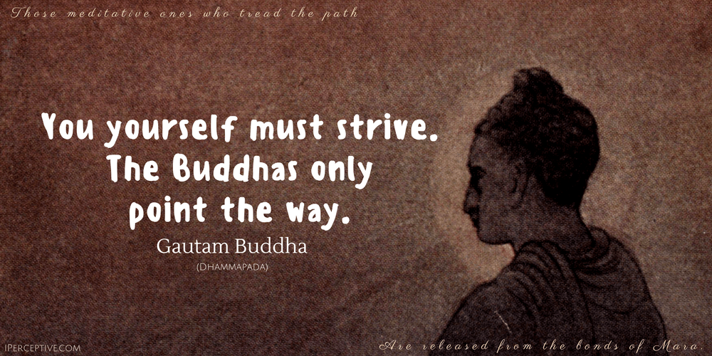 Gautam Buddha Quote: You yourself must strive. The buddhas only point they way.