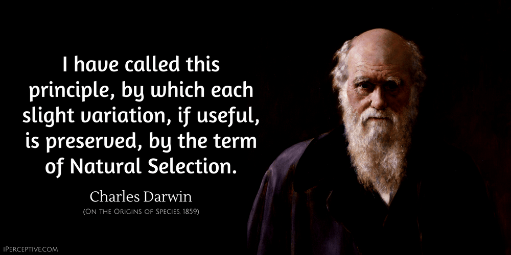 Charles Darwin Quote: I have called this principle, by which each slight variation, if useful, is preserved...