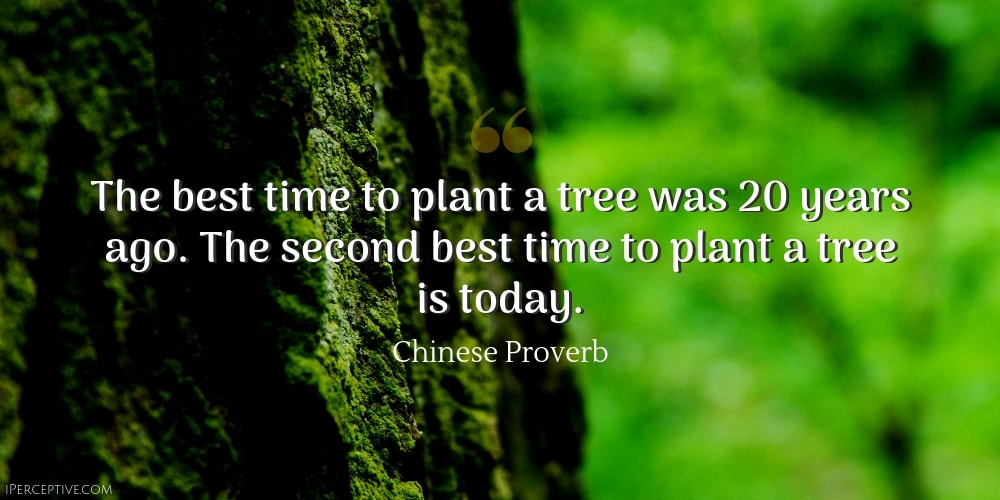 Chinese Proverb: The best time to plant a tree was 20 years ago. The second best time to plant a tree is today.