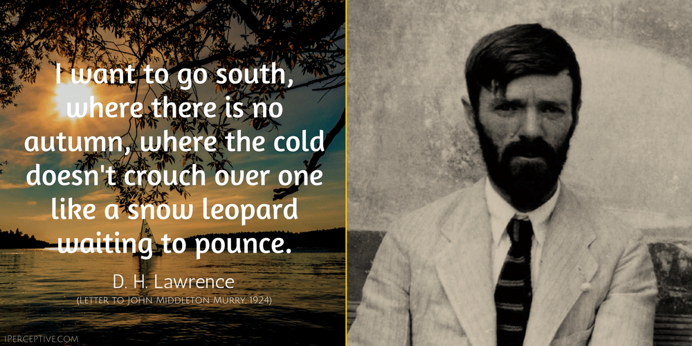 D. H. Lawrence Quote: I want to go south, where there is no autumn, where the cold doesn't crouch over one like a snow leopard waiting to pounce.
