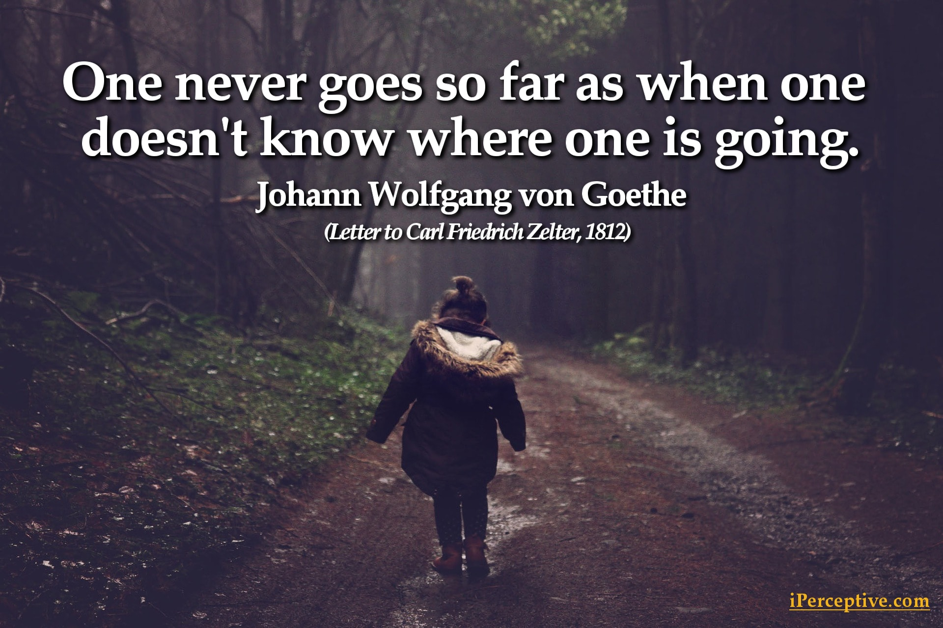 Goethe Quote: One never goes so far as when one doesn't know...