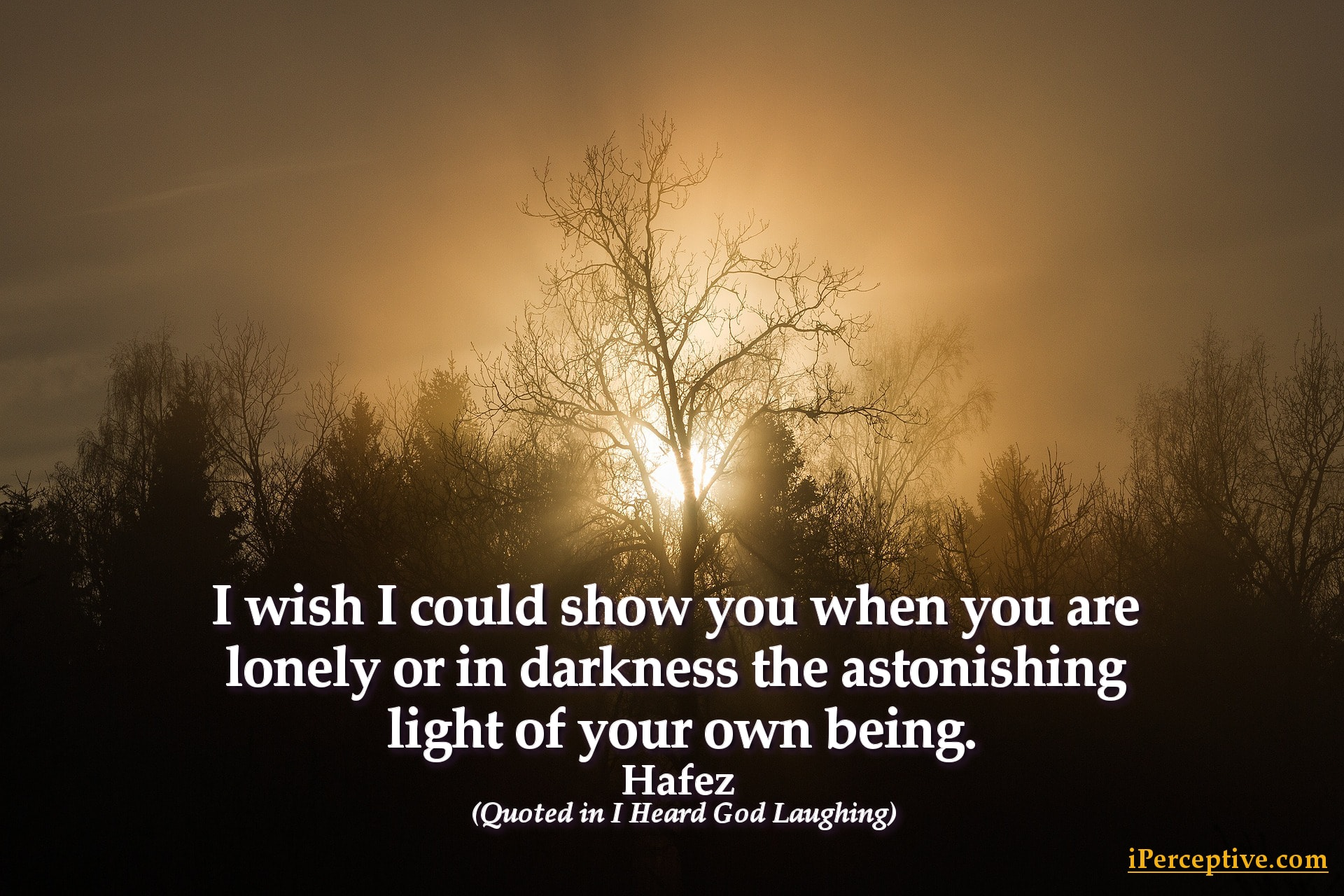 Hafez Quote: I wish I could show you when you are lonely or in darkness the astonishing light ...