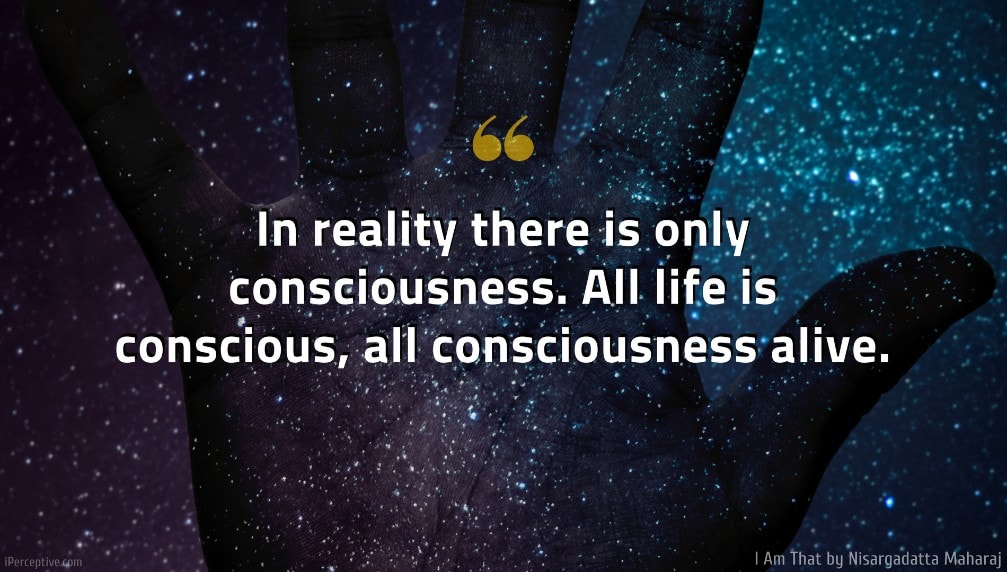 I Am That Quote: In reality there is only consciousness. All life is conscious, all consciousness alive.
