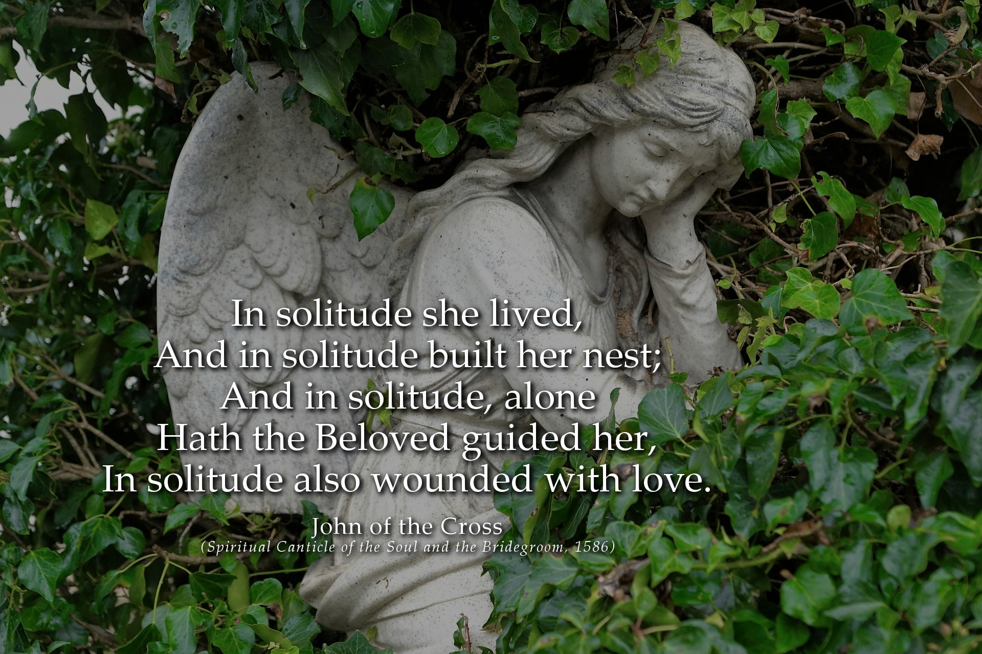 John of the Cross Quote: In solitude she lived, and in solitude bult her nest...