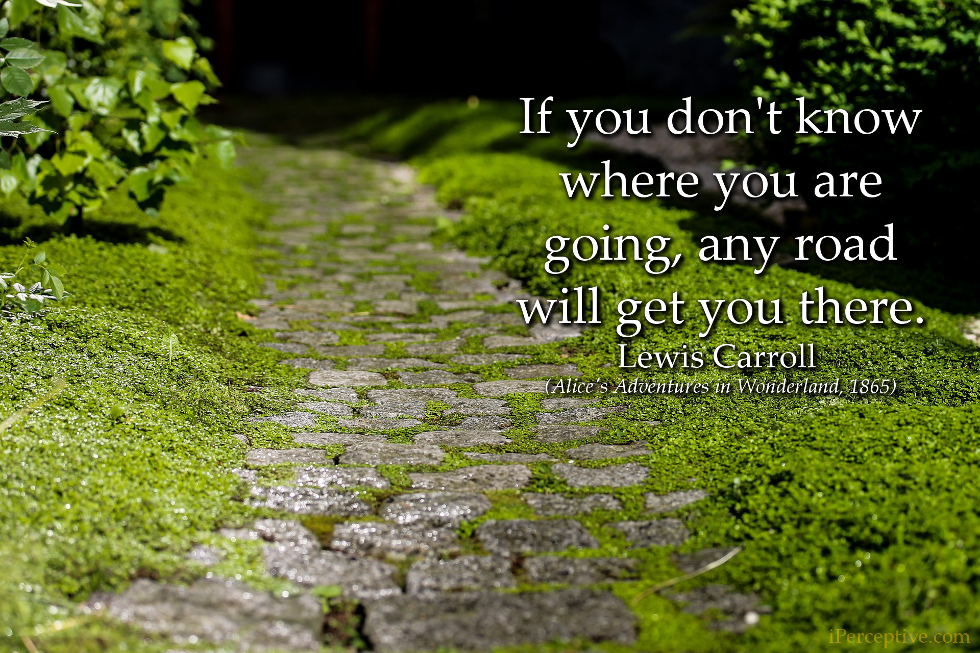Lewis Carroll Quote: If you don't know where you are going, any road will...