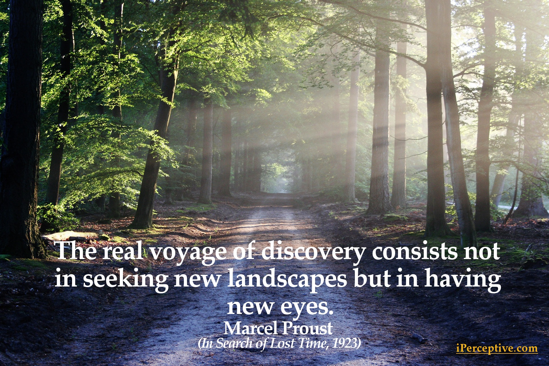 Marcel Proust Quote: The real voyage of discovery consists ...