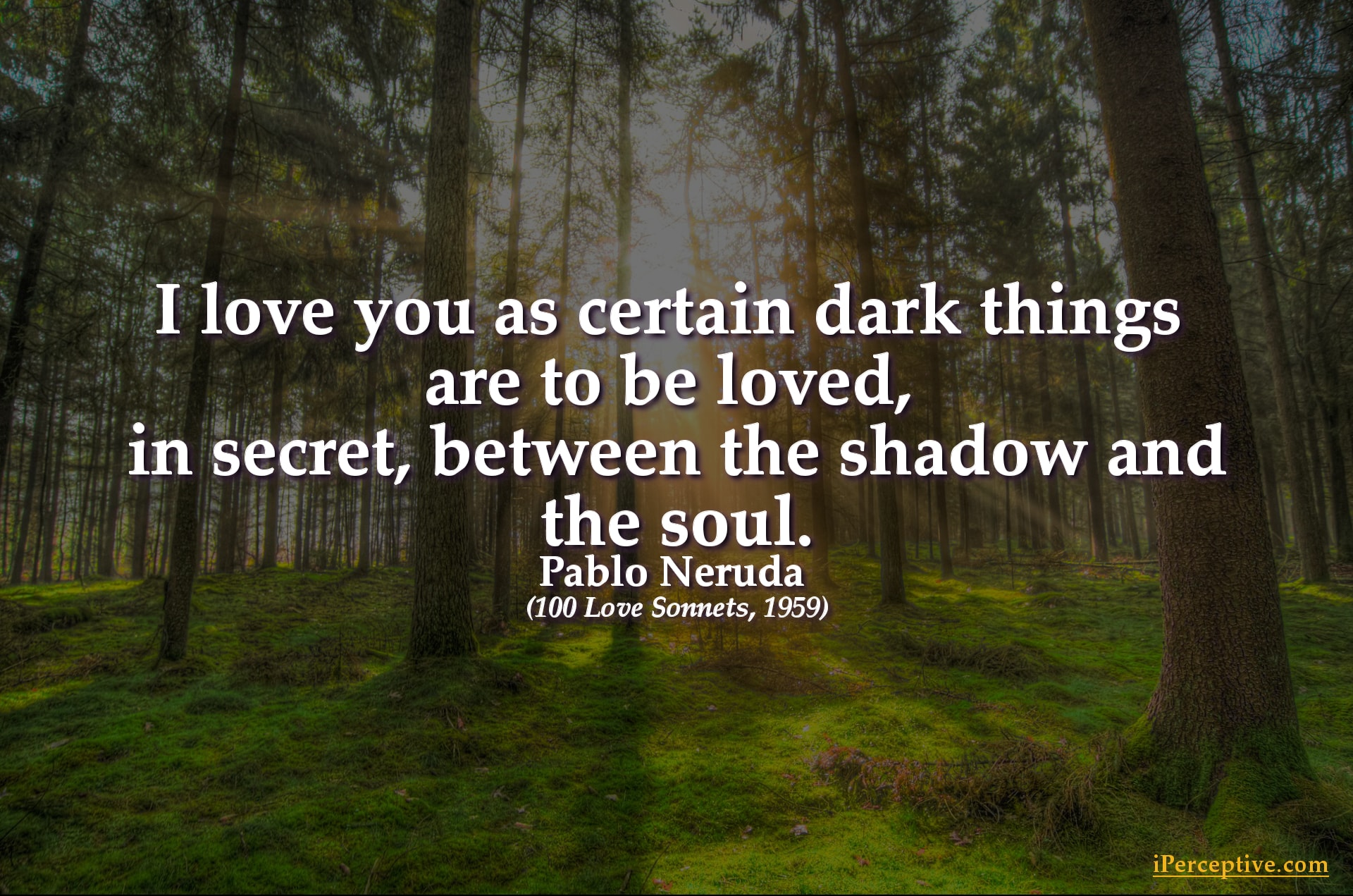 Spiritual Quotes About Love 25 Spiritual Quotes On Love The Mystical Experience