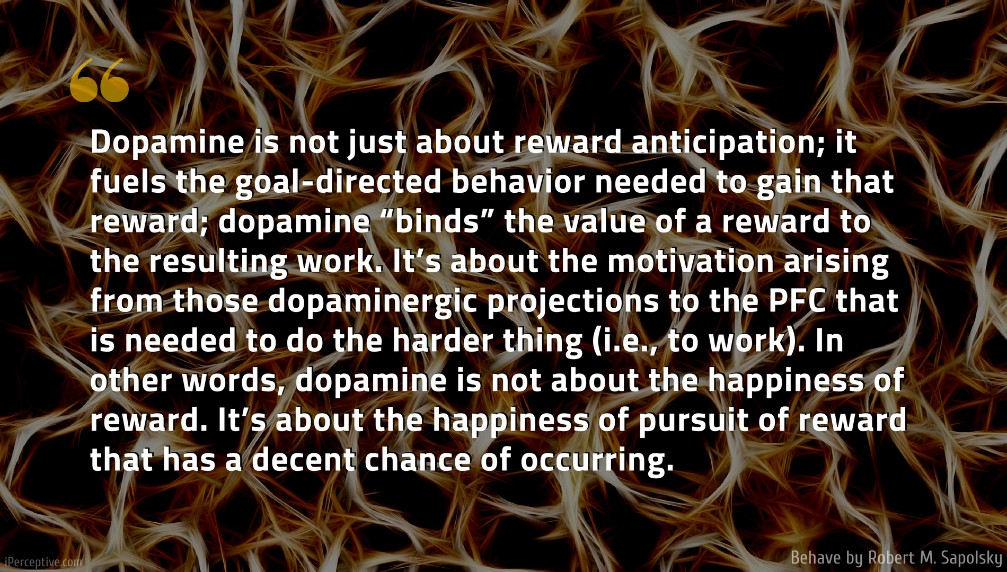 "Robert M. Sapolsky Quote: Dopamine is not just about reward anticipation; it fuels the goal-directed behavior needed to gain that reward; dopamine ""binds"" the value of a reward to the resulting work. It's about the motivation arising from those dopaminergic projections to the PFC that is needed to do the harder thing (i.e., to work). In other words, dopamine is not about the happiness of reward. It's about the happiness of pursuit of reward that has a decent chance of occurring.."