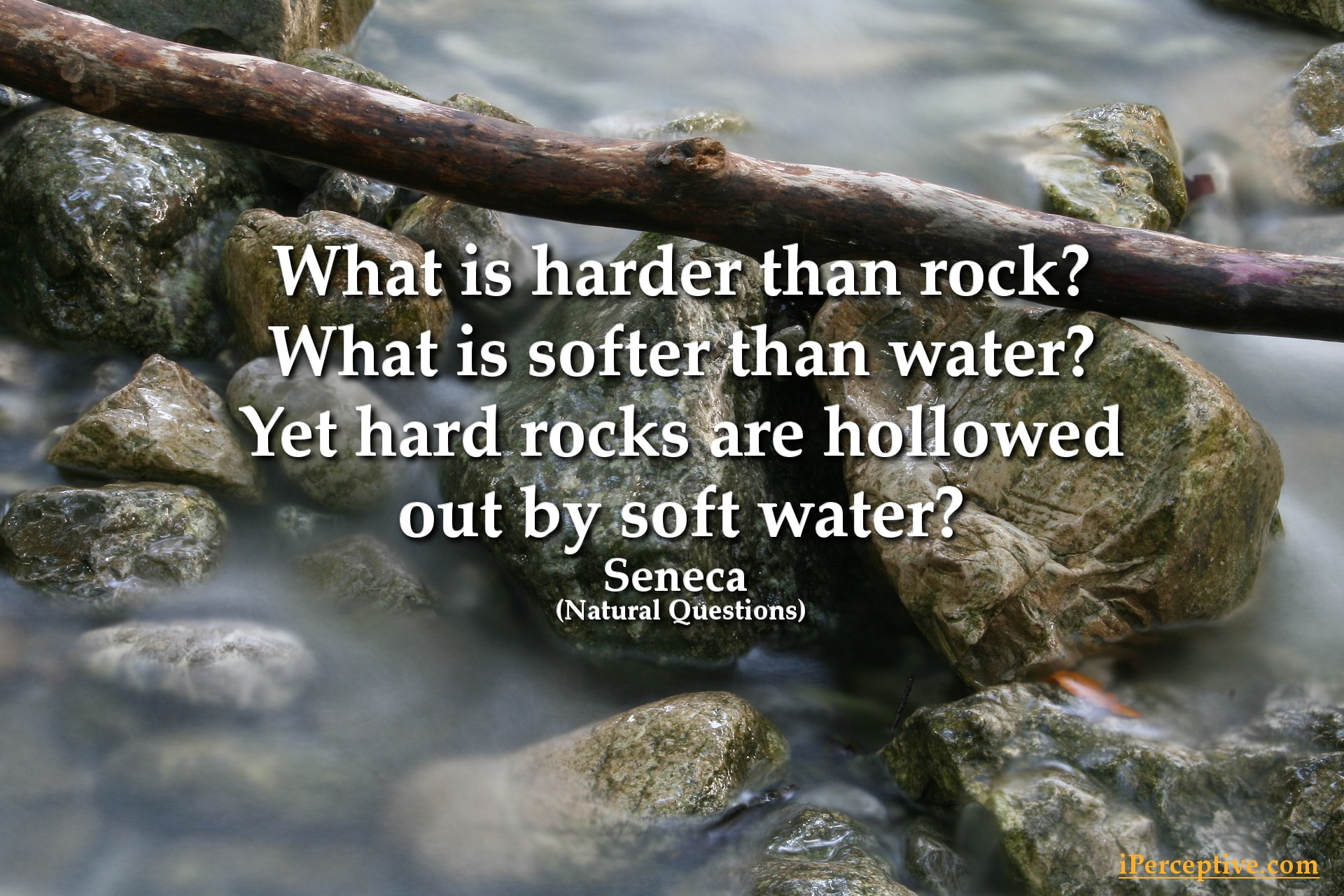 Seneca Stoicism Quote: What is harder than rock? what is softer than water?...