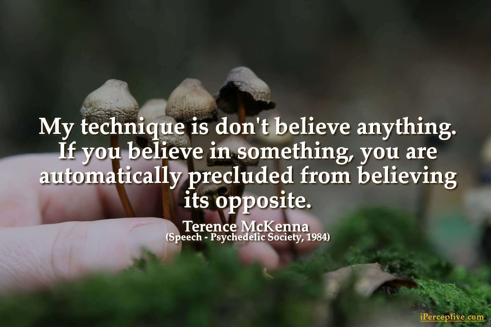 Terence McKenna Quote: My technique is don't believe anything...
