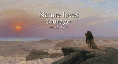 Nature Loves Courage: Positive quotes