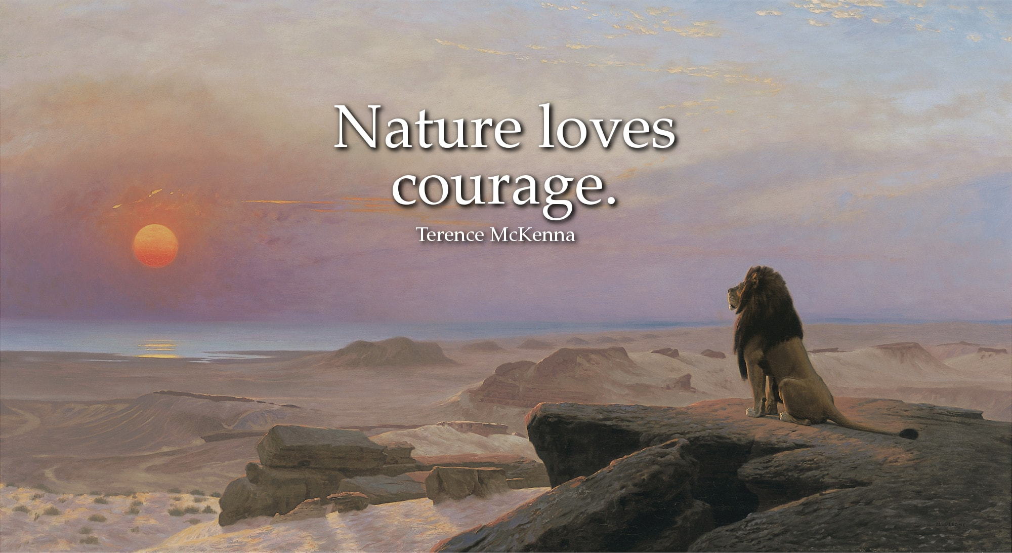 Nature loves courage. Terence McKenna quote