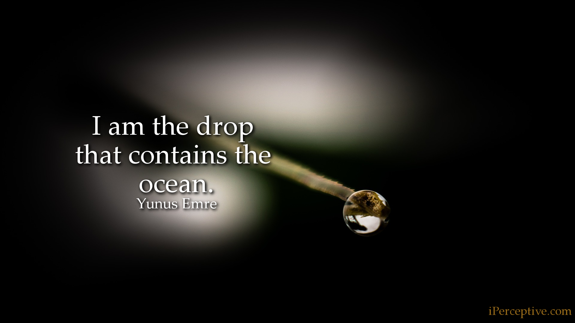 Yunus Emre Sufi Quote: I am the drop that contains the ocean...
