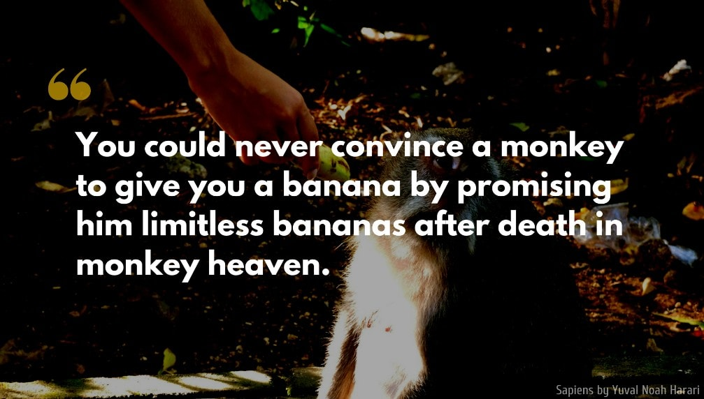 Yuval Noah Harari Quote: You could never convince a monkey to give you a banana by promising him limitless bananas after death in monkey heaven.